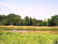 Green River State Wildlife Area