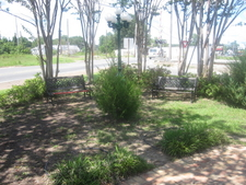 Green Space In Coushatta
