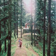 Green Valley In Rajgarh