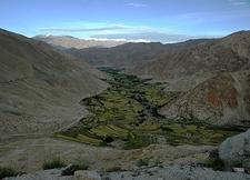 Green Valley Inside Pangong Mountains