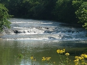 Greenville Creek