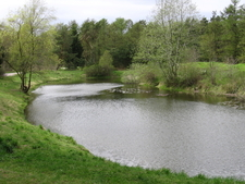 Grenaa Forest Lake