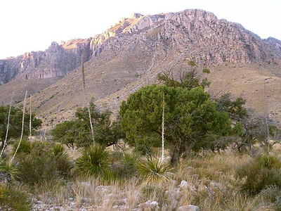 Guadalupe Peak From Entrance To The Park