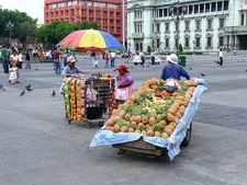 Guatemala City Vendors
