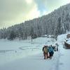 Gulmarg Winter Trekking