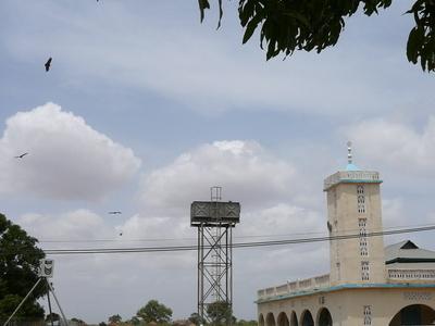 Gambia  Sankandi