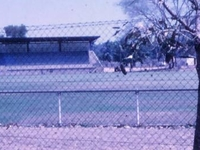 Jardines Oval