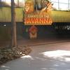 Giantsof Savanna Tunnel