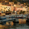 Giglio Harbour