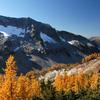Glacier Lyman Tamarack