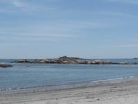 Praia groselha