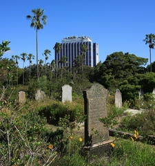 View From North Of Cemetery
