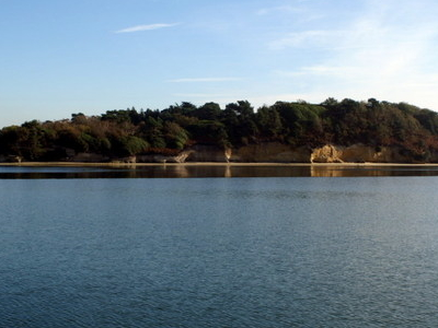 Green  Island  Poole  Harbour