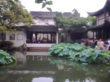 Green Shade Pavilion