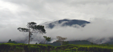 Gunung Gede In The Clouds