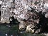 Hafnaberg - Sea-cliffs
