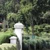 Hakgala-Botanical-Gardens