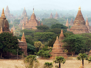 Half Day Highlight Of Old Bagan From Hotel Inside Bagan City Only Photos