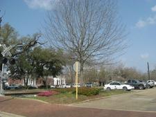 Hammond Louisiana