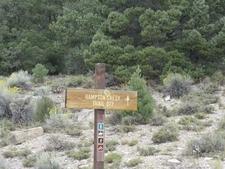 Hampton Creek Trail Head