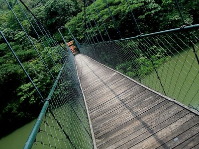 Hanging Bridge From Thenmala