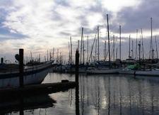 Harbor At Moss Landing State Beach