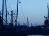 Harbor  Palacios  Texas