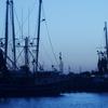 Shrimping Boats In Palacios
