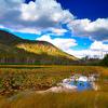 Harlequin Lake Trail Yellowstone
