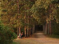 Hartman Creek State Park Campground