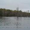 Harwoods Mill Reservoir