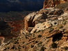 Havasu Canyon Route - Grand Canyon - Arizona - USA