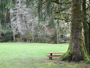 HB Van Duzer Bosque Estatal de Corredor Escénico