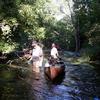 Shiawassee River