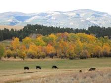Helena National Forest - Montana