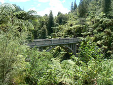 Hellawell's To Bridge To Nowhere Track - North Island - New Zealand