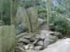Hell's Gate Trail 37 - Tonto National Forest - Arizona - USA