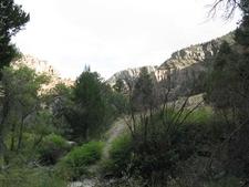Hendy Creek Trail