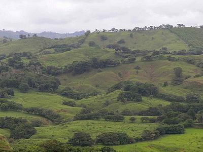 Herrera Panama