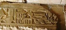Hieroglif Z Abydos