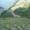 Highline and Granite Park Chalet Trail