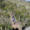 Hikers Along Shira Route - Kilimanjaro