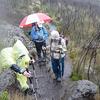 Hiking Kilimanjaro In Rain - Rongai Route