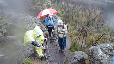 Hiking Kilimanjaro In Rain - Rongai Route