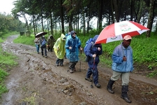 Hiking Kilimanjaro Through Rongai Route