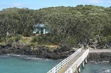Hiking Rangitoto Island - Auckland NZ