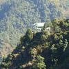 Hillside Perch