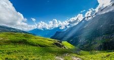Himalayan Alpine Meadows