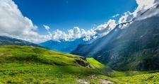 Himalayan Alpine Meadows