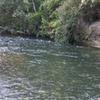 Hinemaiaia River - Tongariro National Park - New Zealand